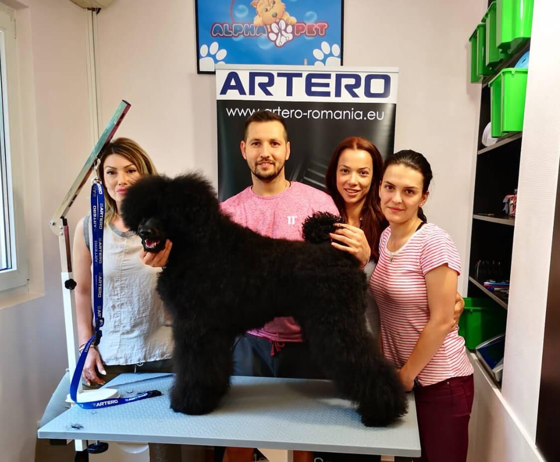 Servicii frizerie canina